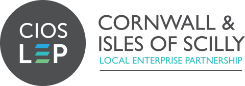 Heart of the south west LEP - Cornwall & Isles of Scilly, Dorset and the Heart of the South West Local Enterprise Partnerships Joint Energy Strategy Development Project