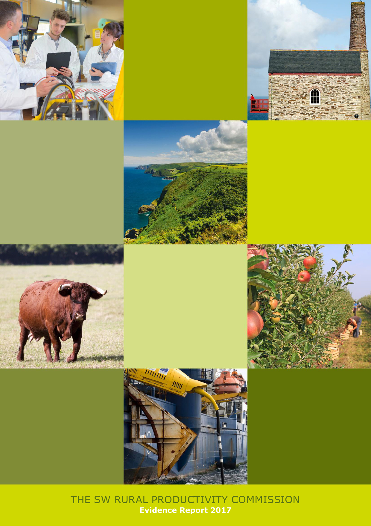 Rural-Evidence-Report-1